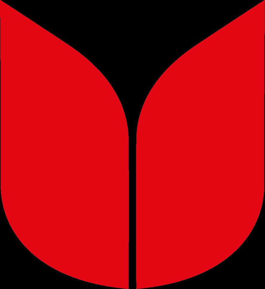 Degenhardt Blumenzwiebeln